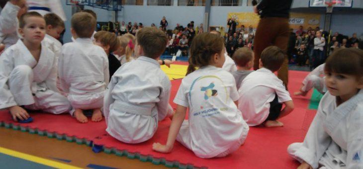 Jak będzie wyglądać Funny Judo w Radzionkowie
